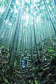 Kiyoranaのヒーリング・ルーム