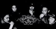 ELEMENT OF A LIFE