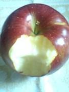 りんご丸かじり同盟
