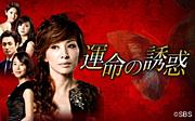韓国ドラマ『運命の誘惑』