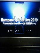 flumpool-拳参戦組-