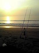 釣り師の夢