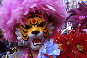 新宿 タイガーマスク