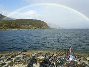 琵琶湖の鯉釣りびわこカープ連盟
