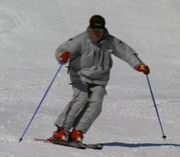 ナラプロスキースクール