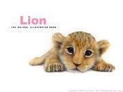 ライオンが好きー!