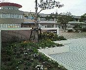 ◎津屋崎小学校◎