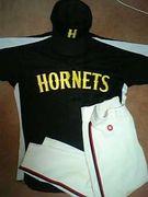 野球バカの集まり HORNETS