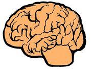 頭脳バトル βversion
