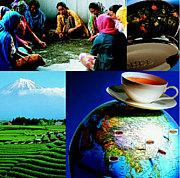 世界紅茶倶楽部