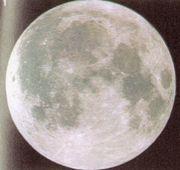 月を見る(観月)!