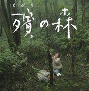 殯の森(もがりのもり)