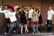 Soul  Mind  Spirit's