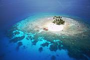 島プロジェクト