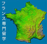 フランス専門留学