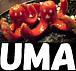 [UMA]オフィシャル