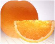 OH!乾いた柑橘類が好き!