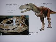 アベリサウルス類