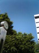 東京農工大学MOT