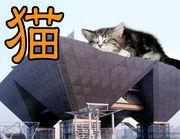 猫が好きfromオタクw