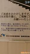 ワイルド&エレガント(仮)