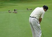 いつもの★加茂ゴルフ練習部★
