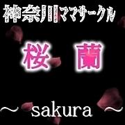 ママサークル☆桜  蘭☆