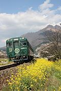 トロQ・トロッコ列車大好き