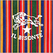 IL BISONTE〜九州〜