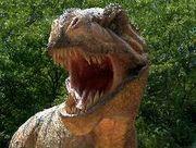 恐竜っぽい顔が好きなヒト