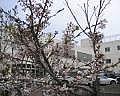 札幌市立上篠路中学校