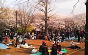 西東京テキトー集会