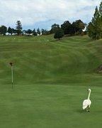 関西土日祝お得にゴルフ行こう会