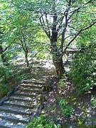山形東 瑞雪会(2006年卒)
