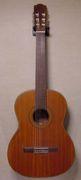 フレットレスギター