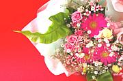 お花の配達専門店『花たより』