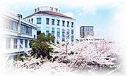 椙山女学園大学 交換留学