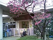 ゆりの木保育園