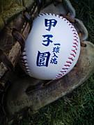福岡県立新宮高校野球部