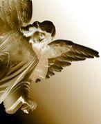 堕とされた天使