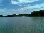 洲原池大好き