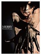 【finale / MERRY】