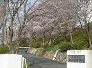 静岡県立大仁高等学校