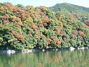 lake SAGAMI master