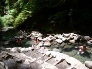 アメリカの温泉