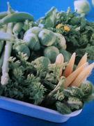 季節の野菜 ダイスキ