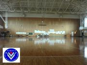 鹿屋体育大学バスケットボール部