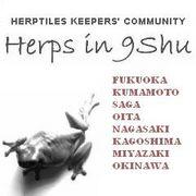 Herps in 9Shu(九州 爬虫類)