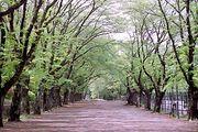 LOVE☆富士森公園★