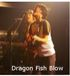 Dragon Fish Blow